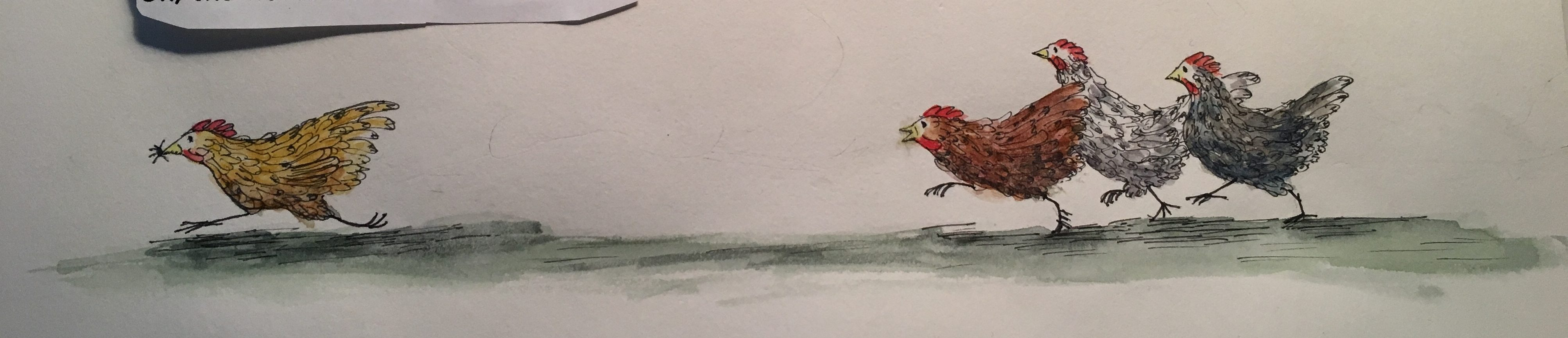 sketch of running chickens